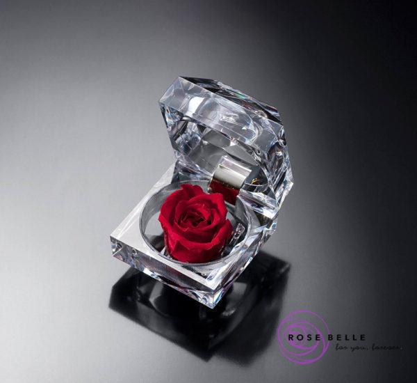 Piękna wieczna róża w brylancie