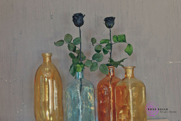 Butelka winston i róże stabilizowane