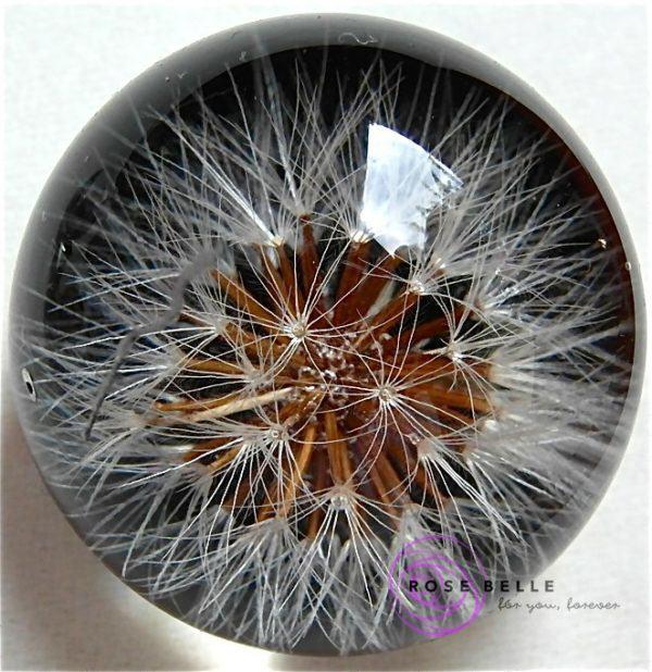 Wisiorek Rose Belle z nasionkami dmuchawca