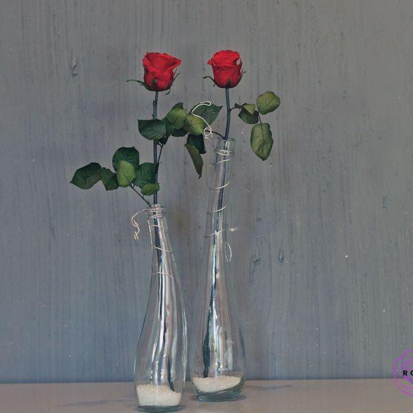 Wazon Eva z pięknymi różami wiecznymi