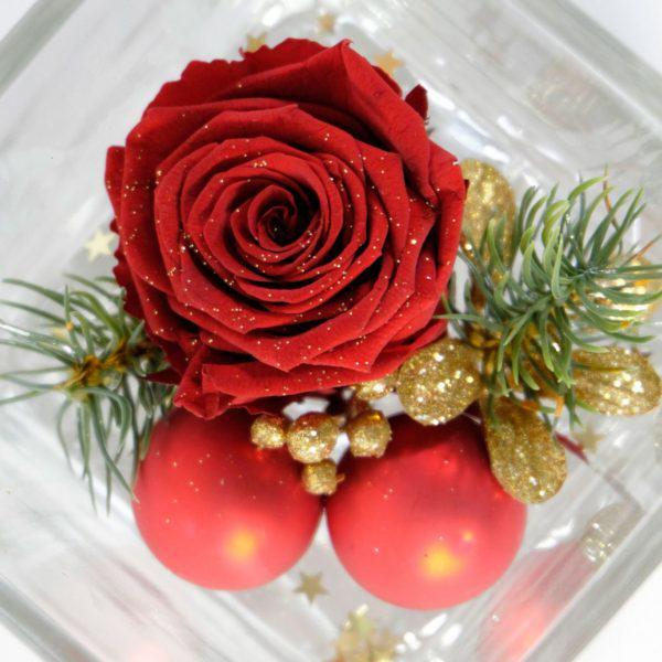 Wazon kwadrat i róża stabilizowana